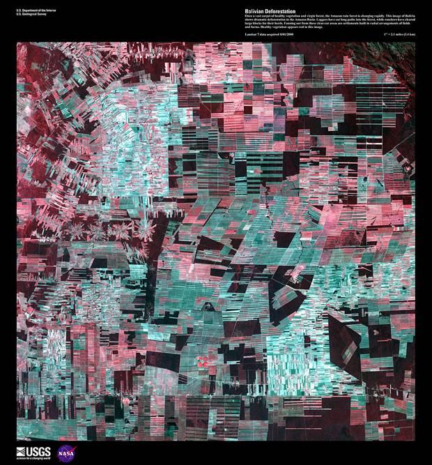 Вырубка леса в Боливии, 1 августа 2000 год