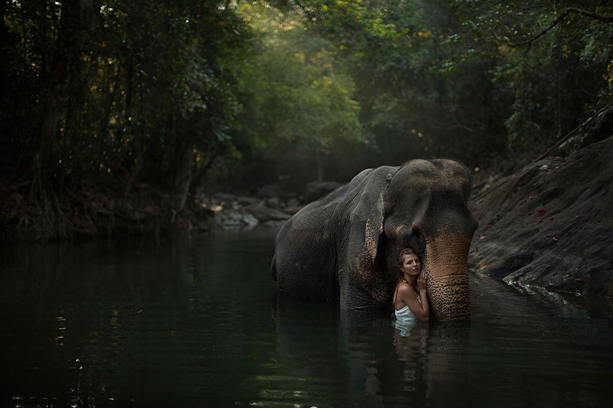 Опасные портреты с дикими животными от Катерины Плотниковой-13