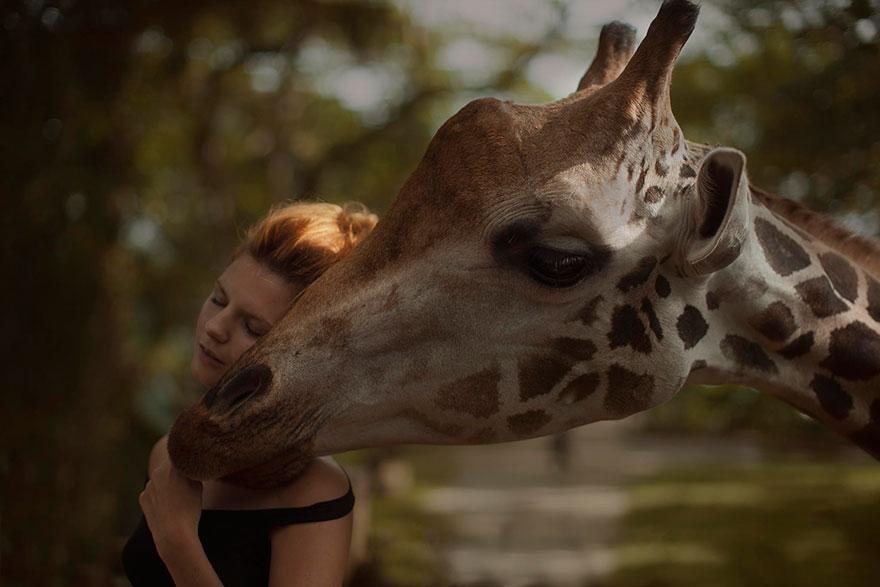 Опасные портреты с дикими животными от Катерины Плотниковой-2
