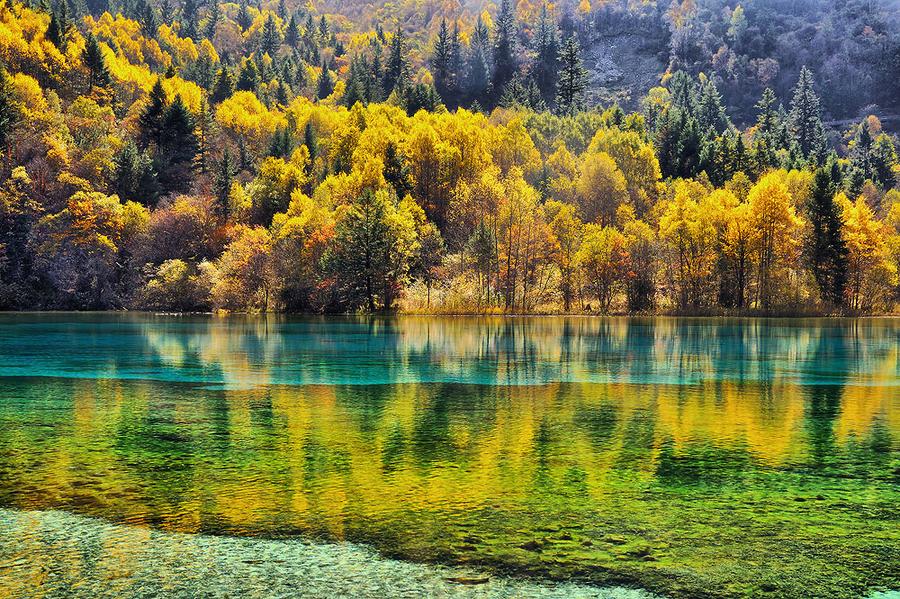 вода озеро осень water the lake autumn  № 1155976 без смс