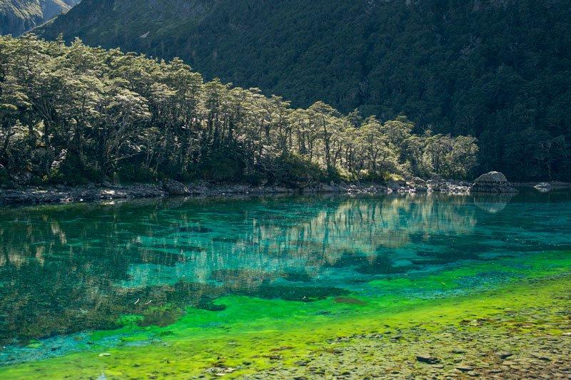 Самое прозрачное озеро в мире находится в Новой Зеландии (2)