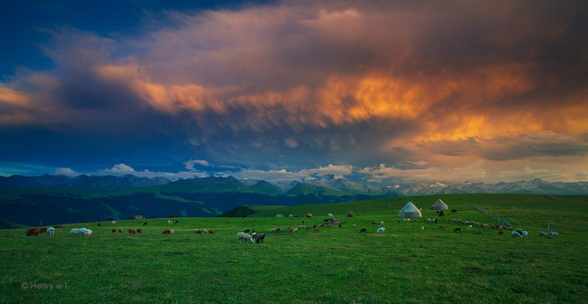 Красота природы в пейзажной фотографии Генри Лю