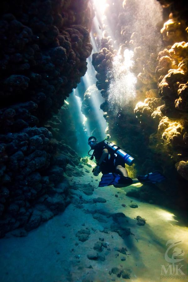 Дайвинг к затонувшим кораблям - 37 невероятных подводных фото