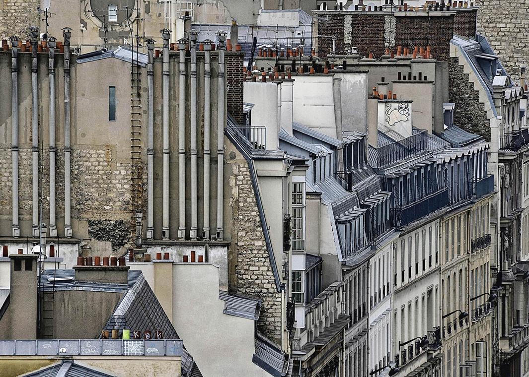 В Париже даже крыши красивые. Фотограф Майкл Вольф - 4