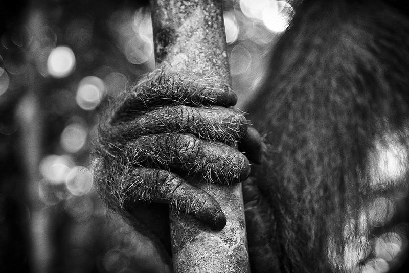 19 9 povsednevnaia Повседневная жизнь африканских племен в фотографиях Марио Герта (Mario Gerth)