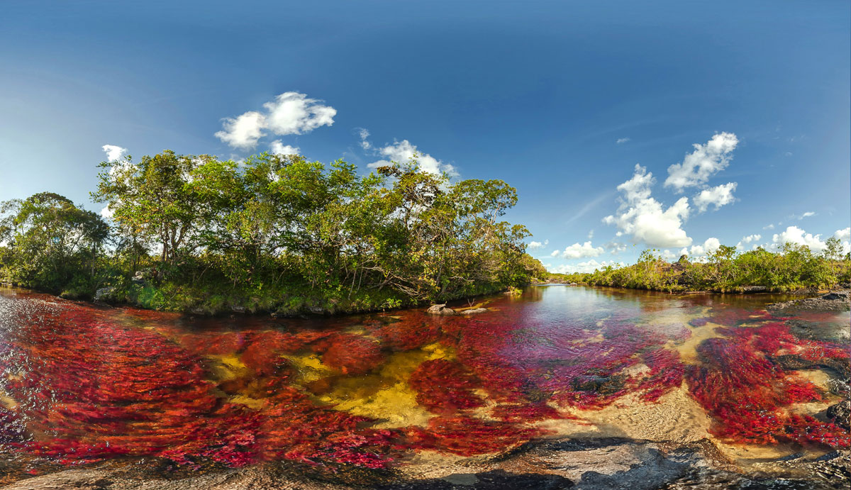 Каньо-Кристалес - фантастическая многоцветная река в Колумбии