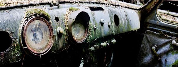 Эти автомобили стоят в пробке в бельгийском лесу больше 70 лет