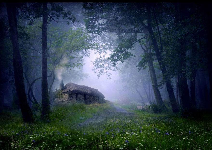 Коттедж в лесу, Шотландия