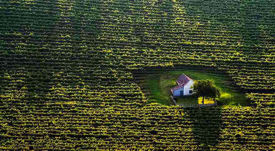 Домик среди полей, Венгрия