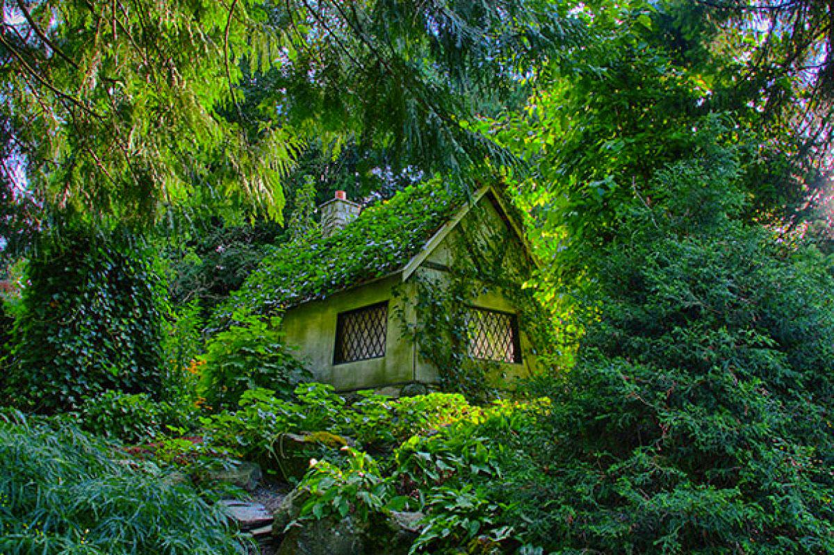 Дом, скрытый в лесу