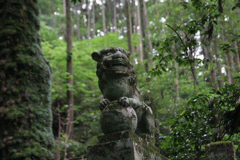 Лесная святыня в Японии - фото