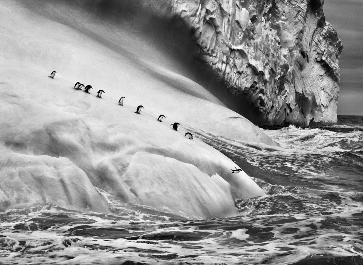 Фотографии нетронутых мест или любовное письмо планете от Себастьяна Сальгадо
