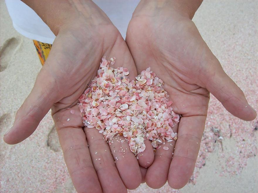 Вся палитра песка