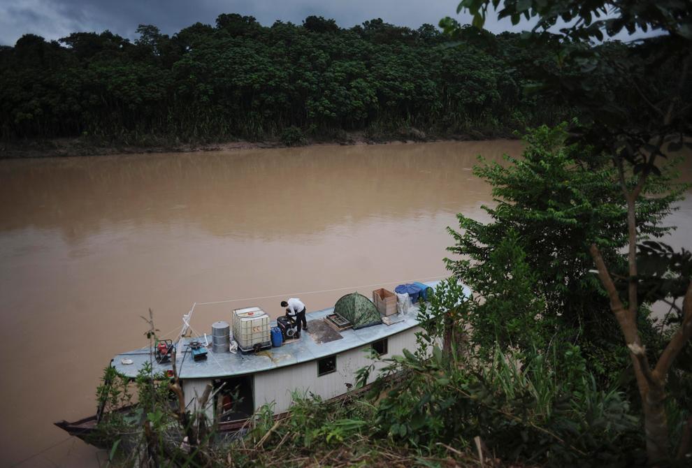 Amazonka 10