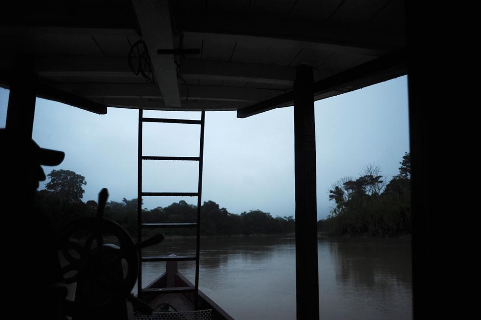 Amazonka 12