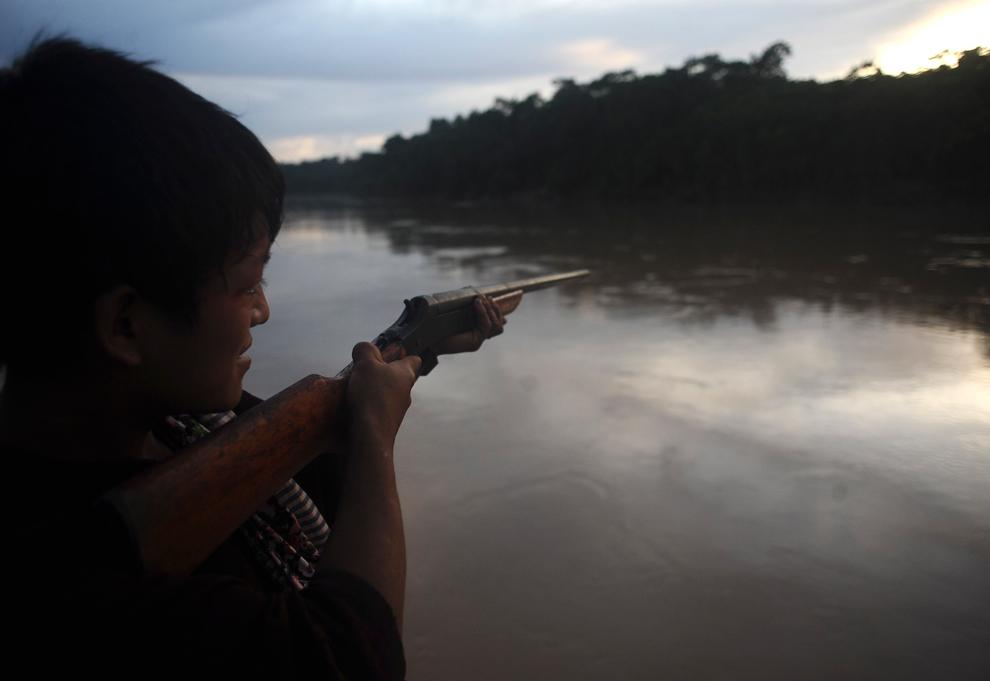 Amazonka 14