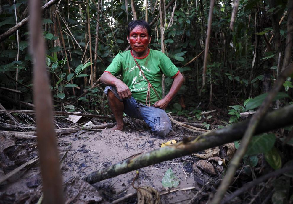 Amazonka 22