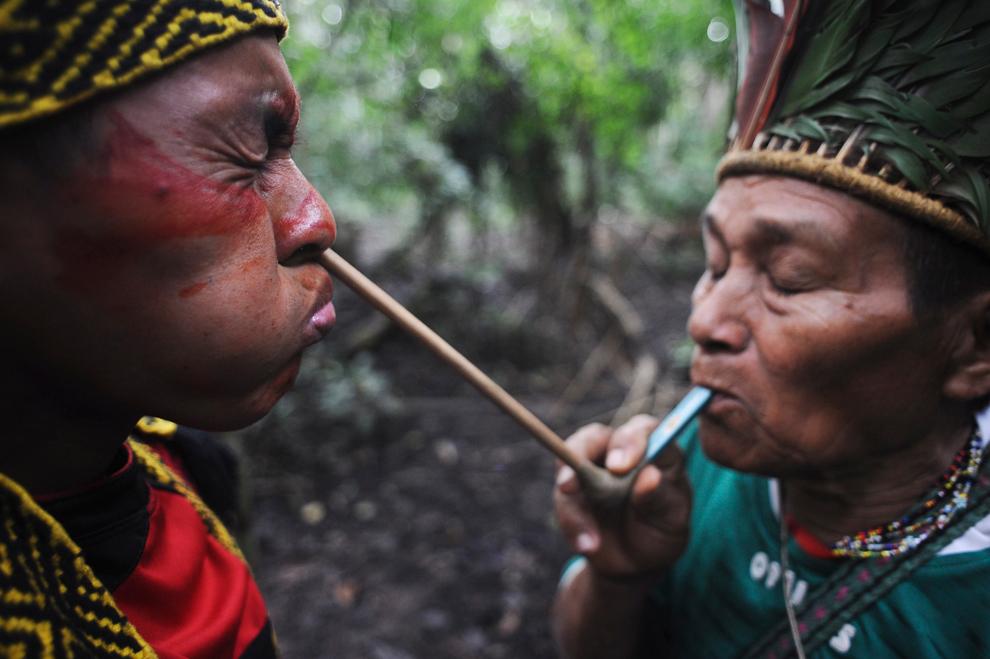 Amazonka 4