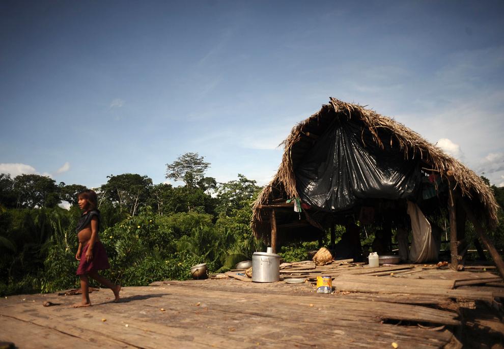 Amazonka 5