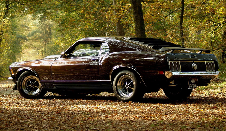 ford-mustang-at-autumn