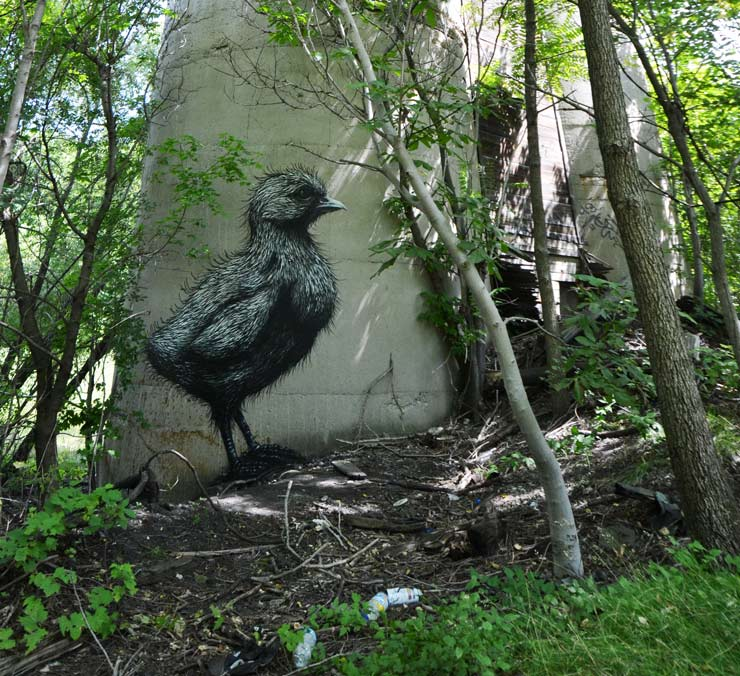 brooklyn-street-art-roa-2013-rochester-web-1