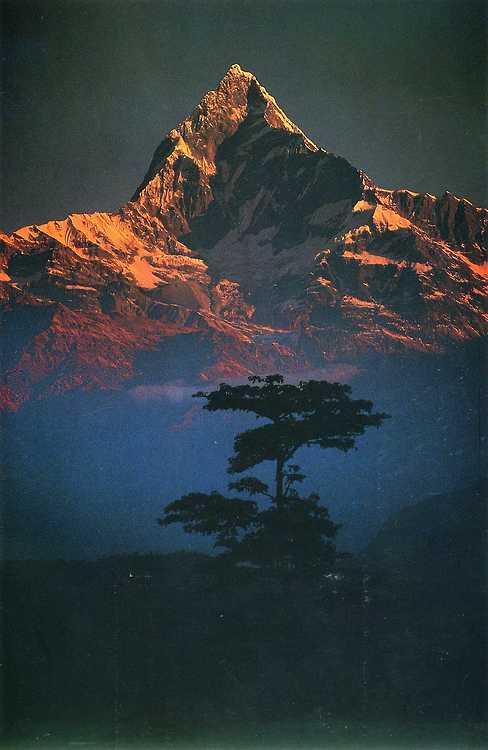 Galen-Rowell-Nepal