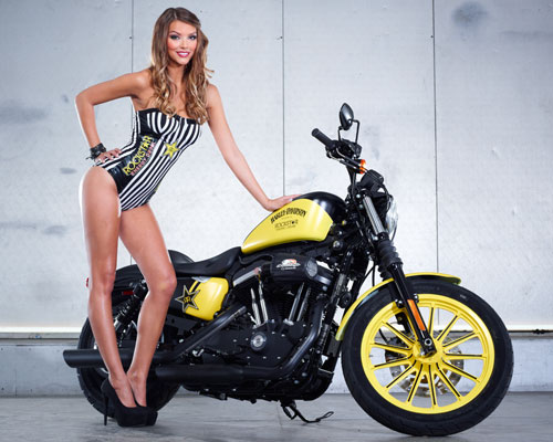 harley-davidson-announces-partnership-with-rockstar-and-bike-giveaway-photo-gallery 19