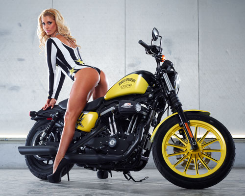 harley-davidson-announces-partnership-with-rockstar-and-bike-giveaway-photo-gallery 22