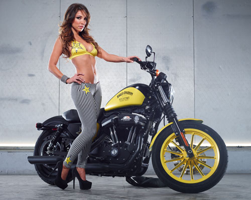 harley-davidson-announces-partnership-with-rockstar-and-bike-giveaway-photo-gallery 23