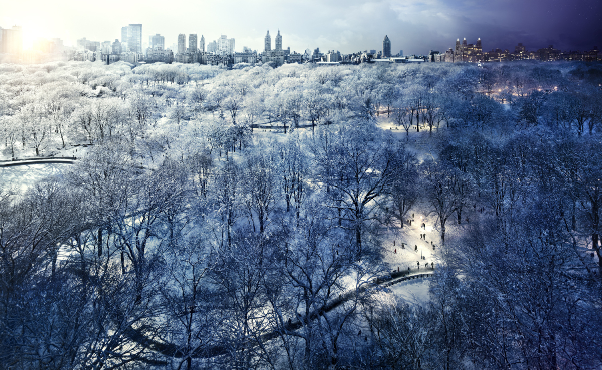 10day to night central park winter