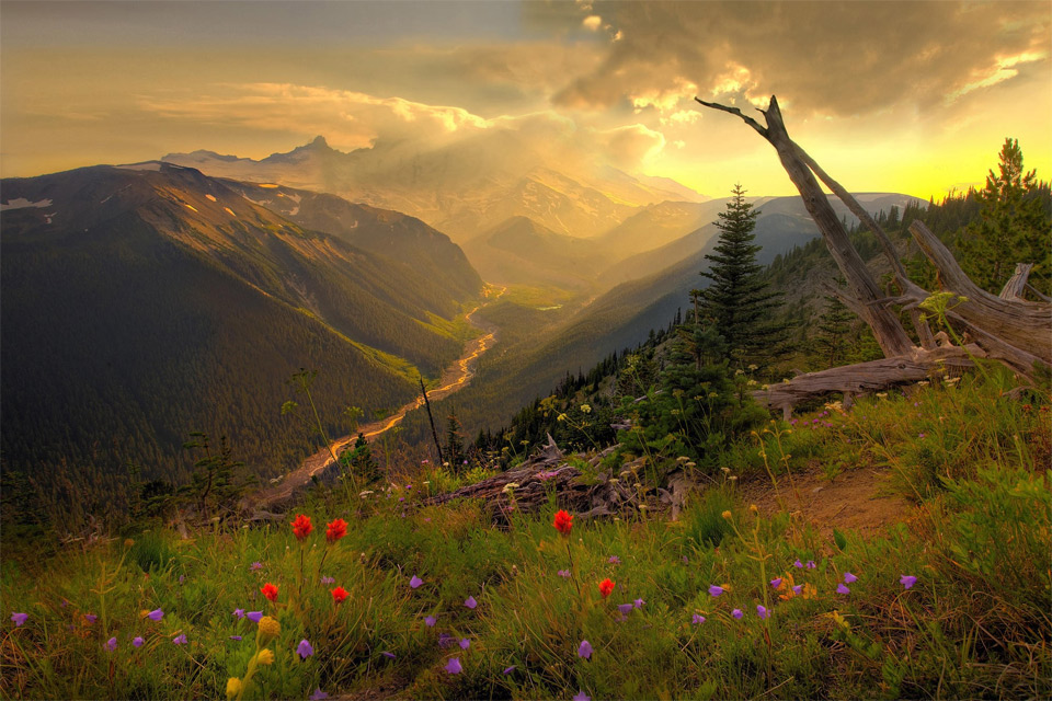 92beautiful-mount-rainier-national-park