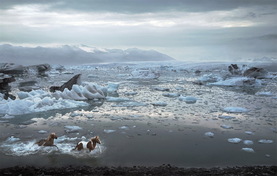 2horses-of-iceland-lagoon