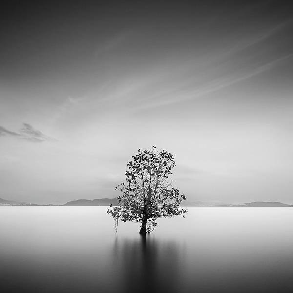 By: Sudharshun