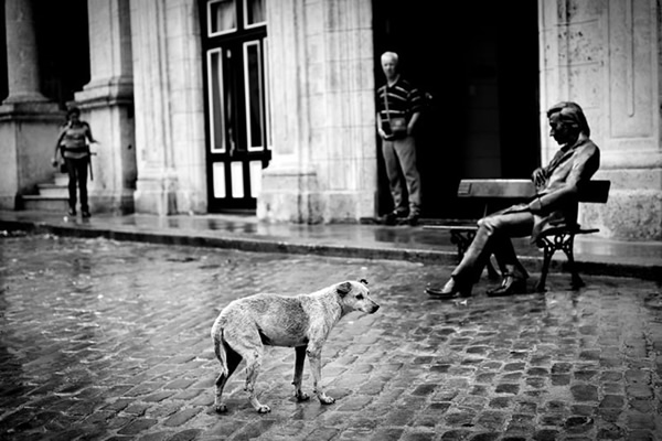 Inspiring Street Photography By Sagi Kortler