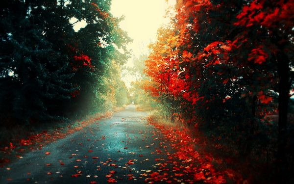 autumn_wallpapers_20