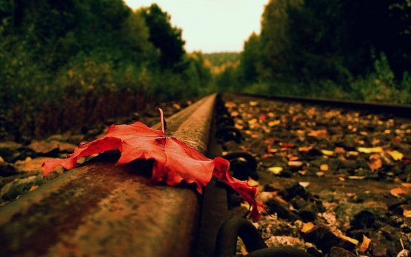 autumn_wallpapers_3