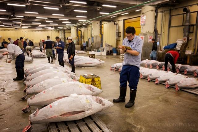 Цукидзи – один из крупнейших рыбных рынков в мире