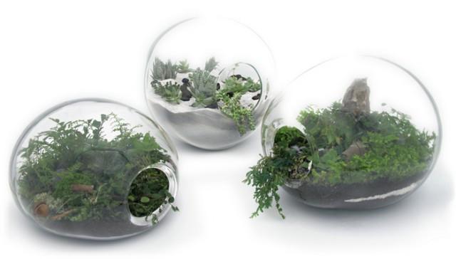 Флорариумы от James Modern – миниатюрные пейзажи для любого интерьера