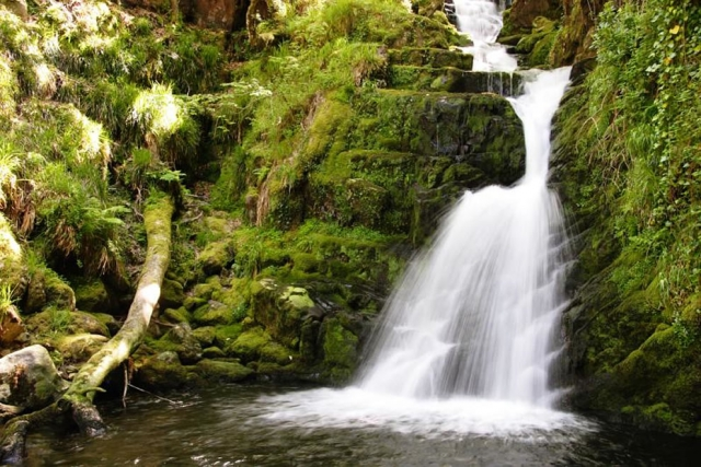 Ирландия - замки, скалы и красивые зелёные пейзажи (37 фотографий)