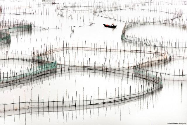 Бамбуковые миры: красота китайской аквакультуры в минималистичных фотографиях