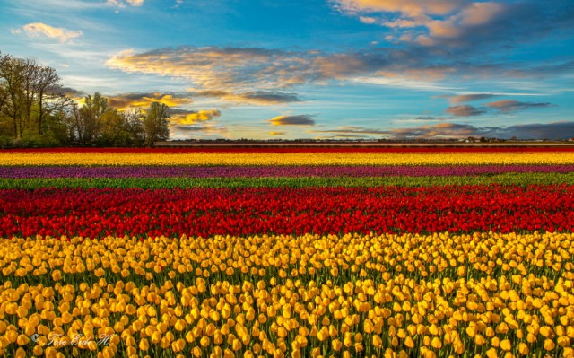 10 самых счастливых стран мира в фотографиях