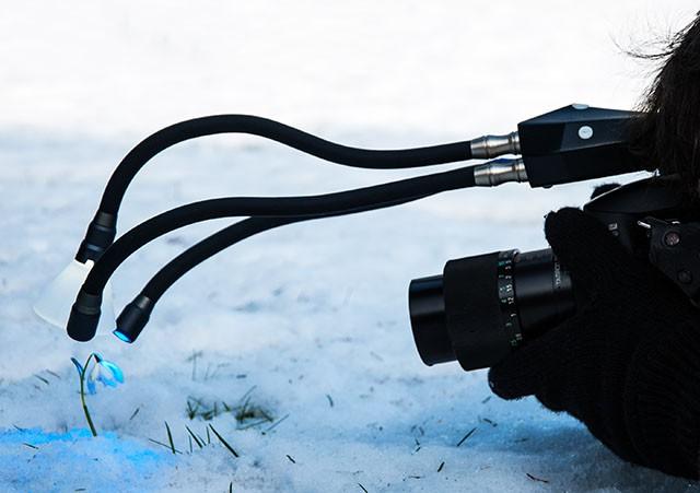 Adaptalux - портативное освещение для макросъёмки