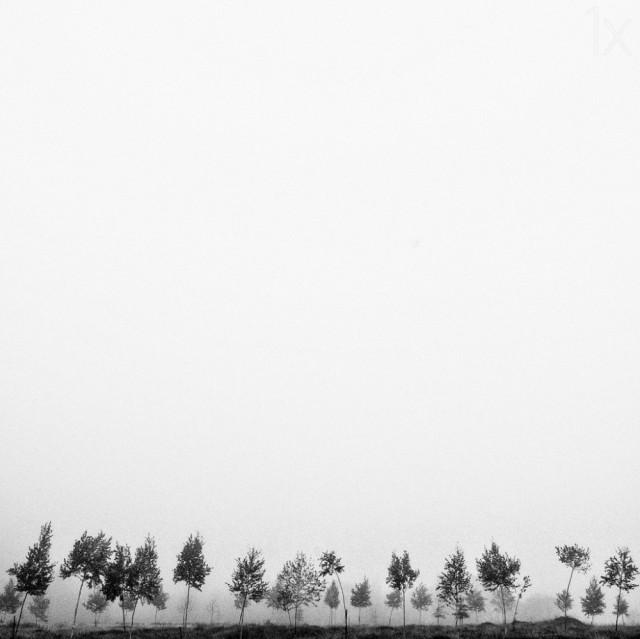 Минимализм во всей красе: 25 фотографий, в которых нет ничего лишнего