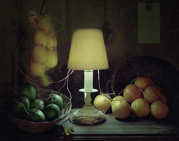 Как фотограф Калеб Чарланд объединил науку и искусство