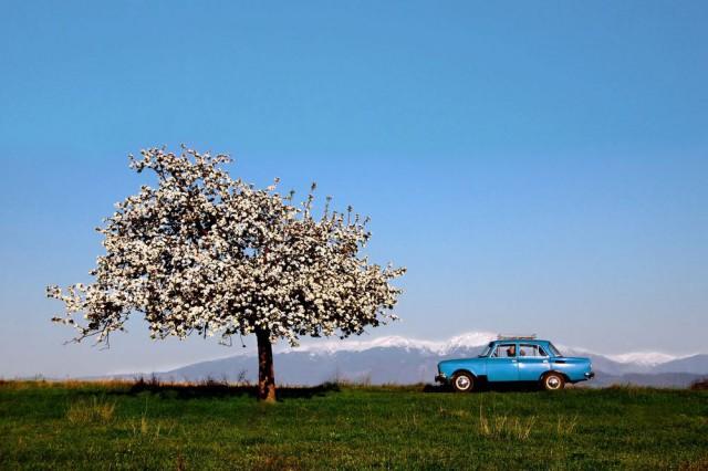 Весна на дороге