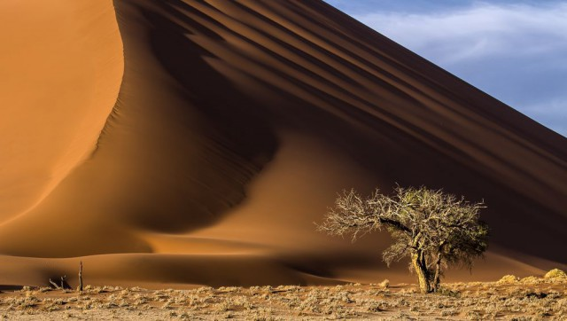Дюна в Намибии