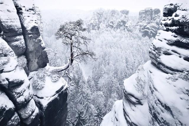 «Зимняя сказка»: пейзажные фотографии заснеженных горных лесов Европы