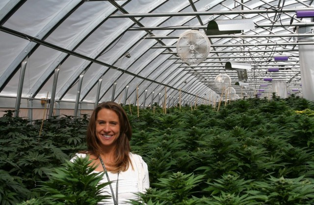 Свободная трава: где в мире легализовали марихуану, где хотят легализовать и где не сажают в тюрьму