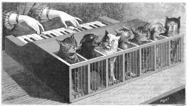 «Кошачье фортепьяно»: короткометражка по мотивам истории о несчастных кошках