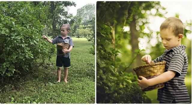 Сравнение: насколько по-разному видят сцену фотограф-любитель и профессионал